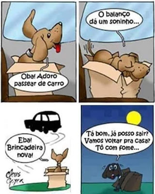 tirinha-ilustracao-cachorro-sendo-abandonado