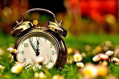 relógio analógico na grama